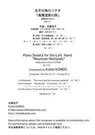 Piano Sonata for the Left  Hand