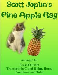 Scott Joplin: Pine Apple Rag for Brass Quintet