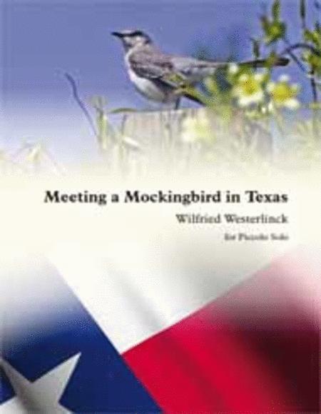 Meeting a Mockingbird in Texas