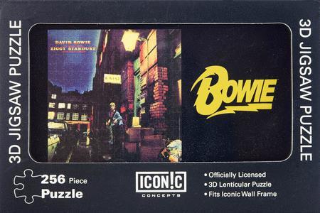 David Bowie Ziggy Stardust 3D Lenticular Puzzle