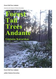 Forest Tall Trees Andante