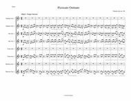 Pizzicato Ostinato from Symphony No. 4