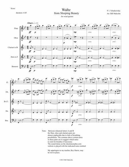 Waltz from Sleeping Beauty