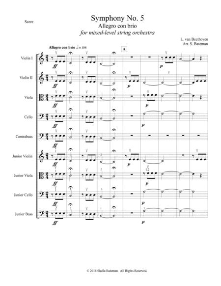 Download Beethoven Symphony No  5 For Mixed Level String