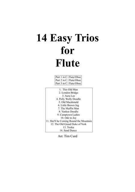 14 Easy Trios For Flute