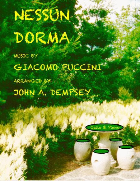 Nessun Dorma (Cello and Piano Duet)