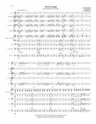 Sweet Caroline by Neil Diamond - Small German Band