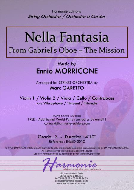 NELLA FANTASIA - adapted from Gabriel's Oboe - The Mission // Ennio MORRICONE // STRING ORCHESTRA