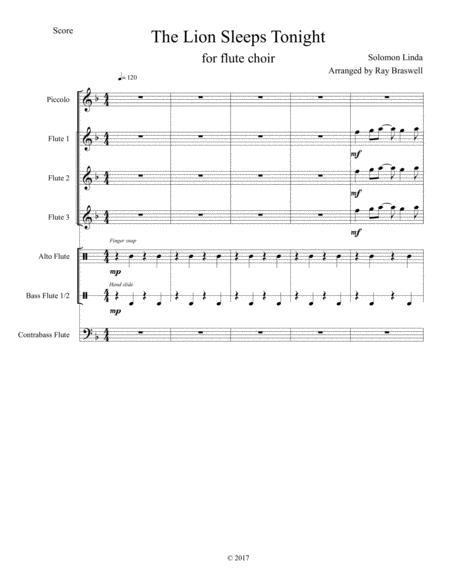 The Lion Sleeps Tonight (Flute Choir)