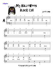 My Halloween Black Cat