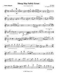 Sheep May Safely Graze Violin and Organ