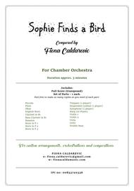Sophie Finds a Bird - for chamber orchestra