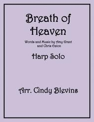 Breath Of Heaven (Mary's Song), arranged for lever harp (pedal harp can play too)