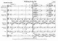 Walking In The Air - Flexible Wind Ensemble