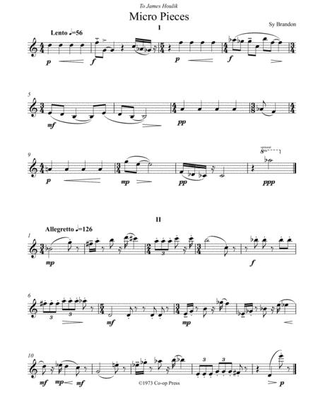 Micro Pieces for Unaccompanied Saxophone