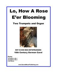 Lo, How A Rose E'er Blooming -  Two Trumpets and Organ