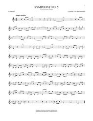 Symphony No. 5 In C Minor, First Movement Excerpt