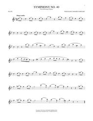 Symphony No. 40 In G Minor, First Movement Excerpt