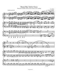 Sheep May Safely Graze Piano Trio (1 Piano 6 Hands)
