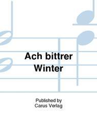 Ach bittrer Winter