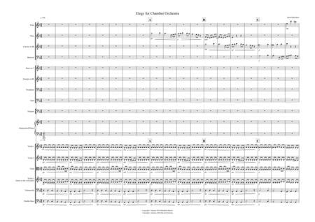 Adagio for School Orchestra