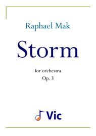 Storm, op. 3