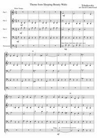 Theme from the Sleeping Beauty Waltz Tchaikovsky arr. David Catherwood