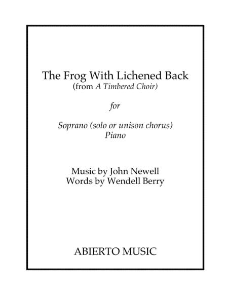 The Frog With Lichened Back