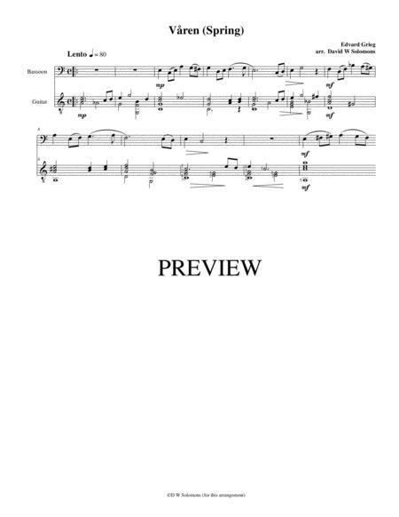 Våren (Spring) for bassoon and guitar