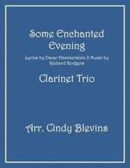 Some Enchanted Evening, arranged for Clarinet Trio