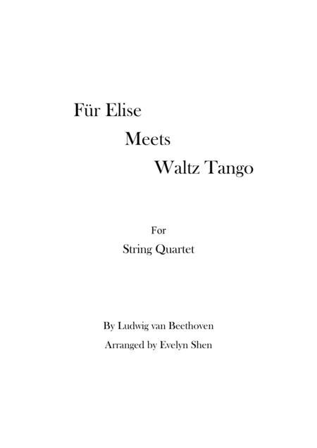 Für Elise Meets Tango Waltz