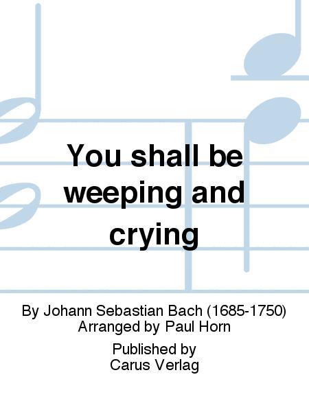 You shall be weeping and crying (Ihr werdet weinen und heulen)