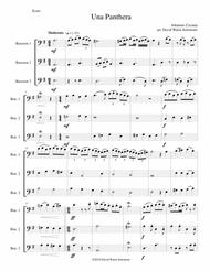 Una panthera in compagnia de Marte (A Panther in company of Mars) arranged for 3 bassoons