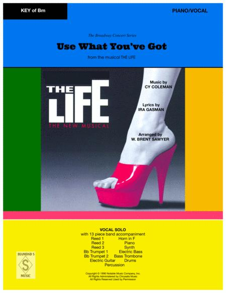 Use What You Got from the musical The Life - PIANO/VOCAL in Bm