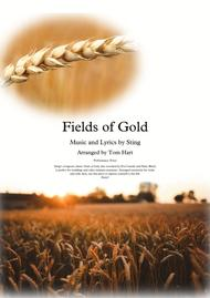 Fields Of Gold - Violin & Cello Duet
