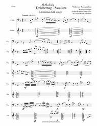 Swallow ԾԻԾԵՌՆԱԿ (Dzidzernag) arranged for cello and guitar