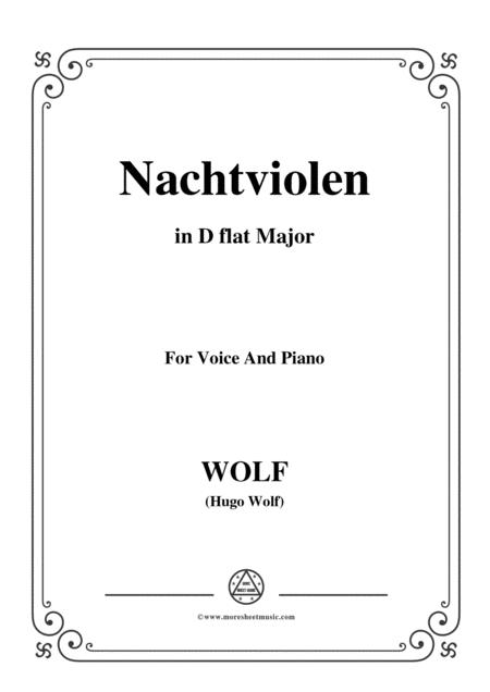 Wolf-Nachtviolen in D flat Major,for voice and piano
