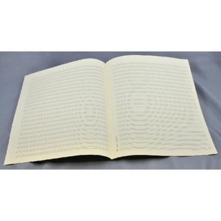 Music manuscript paper 22 staves