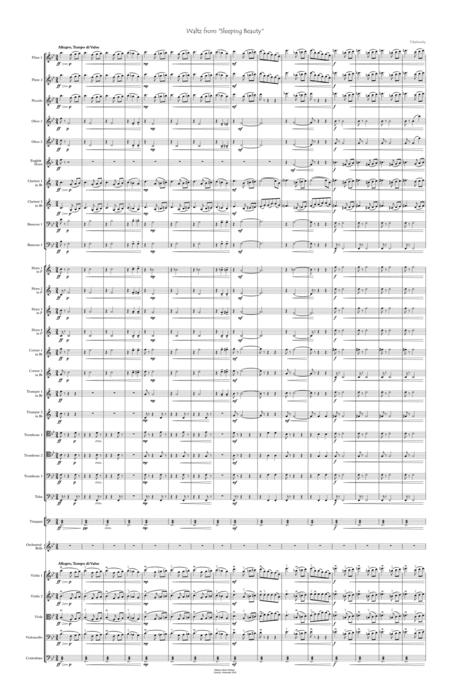 Sleeping Beauty Waltz for orchestra