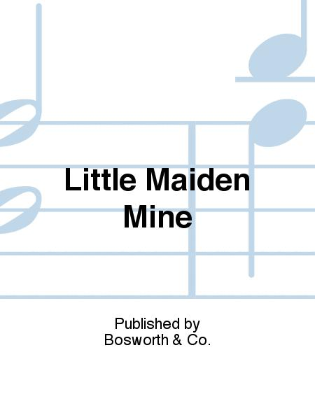 Little Maiden Mine