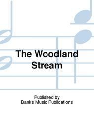 The Woodland Stream