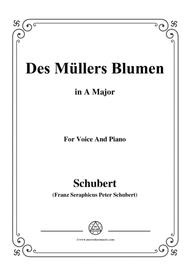 Schubert-Des Müllers Blumen in A Major,for voice and piano