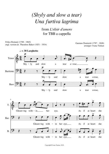 Shyly and slow a tear (Una furtiva lagrima) TBB a cappella, A minor