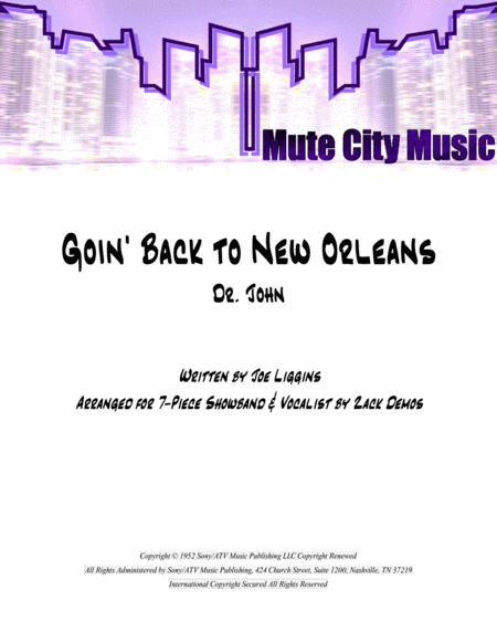 Going Back To New Orleans