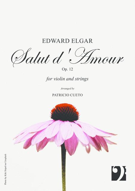 Salut d'amour - for violin and string orchestra
