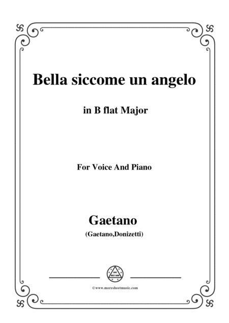 Donizetti-Bella siccome un angelo in B flat Major, for Voice and Piano