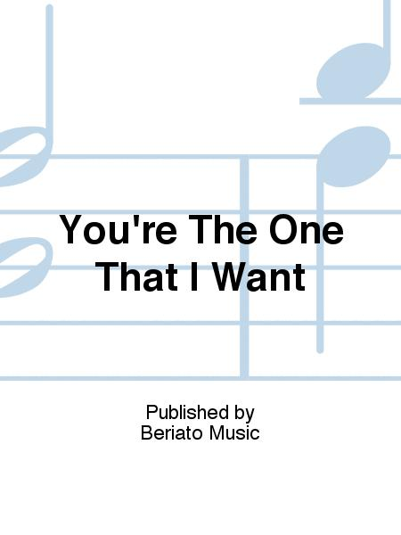 You're The One That I Want