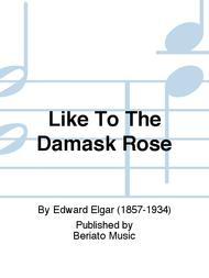 Like To The Damask Rose