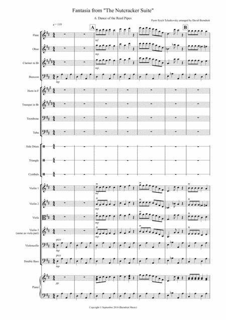 Dance of the Reed Pipes (Fantasia from Nutcracker) for School Orchestra