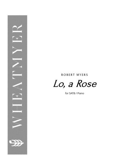 Lo, a Rose